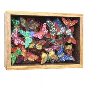 mothbox