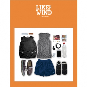 Like the wind issue 11