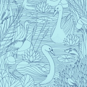 Birds_Laurie-Hastings_Crop1